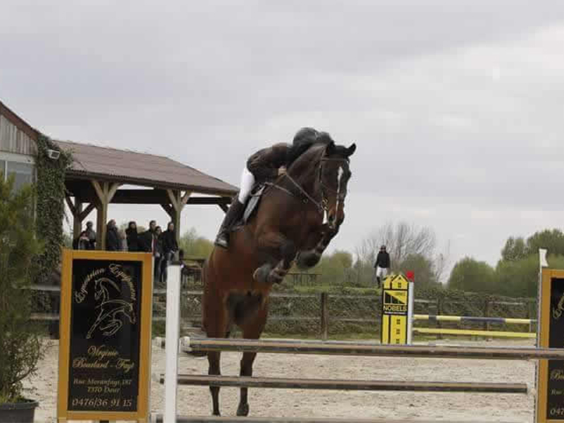 Equitation western baisieux