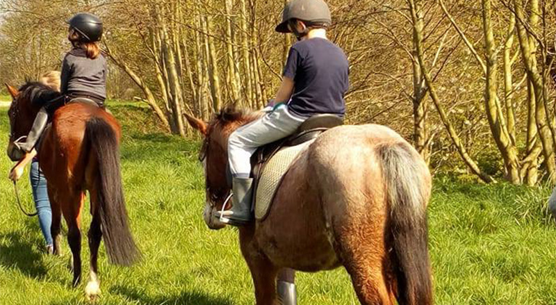 Location et balade en poney a Boussu