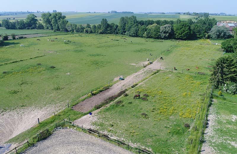 Pension et Garde de chevaux a Baisieux dans le Hainaut