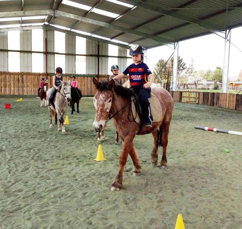 Stage equitation pour enfants a Hensies